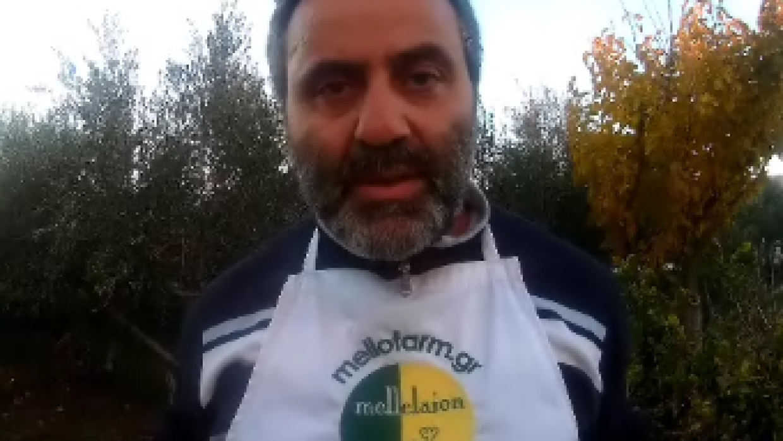 Κολοκυθόπιτα – τραχανόπιτα – video συνταγή